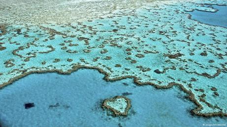 Australien Meeresschutzgebiet Great Barrier Reef Luftaufnahme
